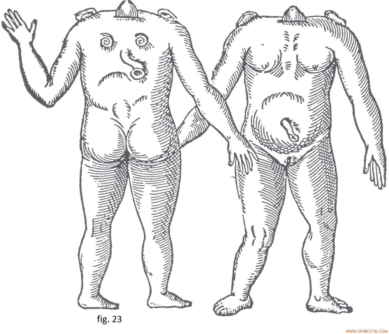 Litros y litros de semen Porno Bizarro - Sexo Extremo